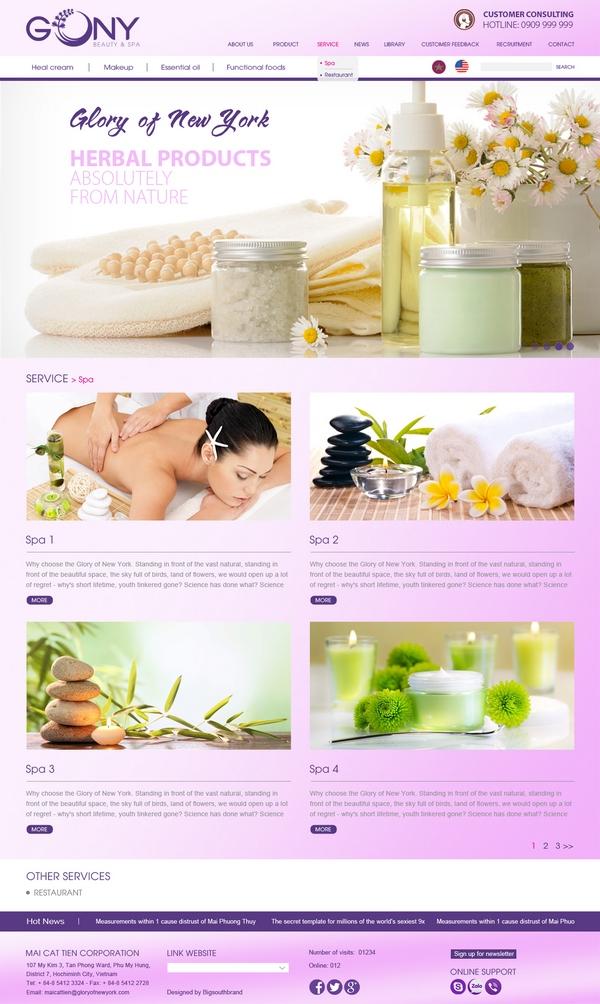 thiết kế webiste spa